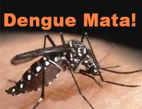 DOST Dengue Summit tackles R&D directions in dengue prevention and control